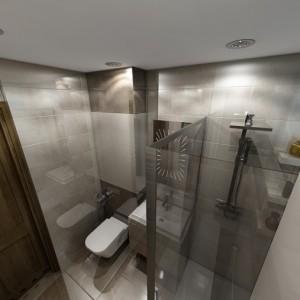 Łazienka, Niepołomice